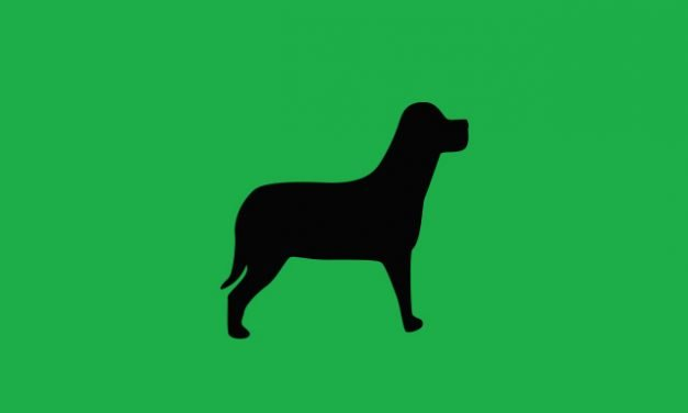 Un cartone animato per il lavaggio cani self-service