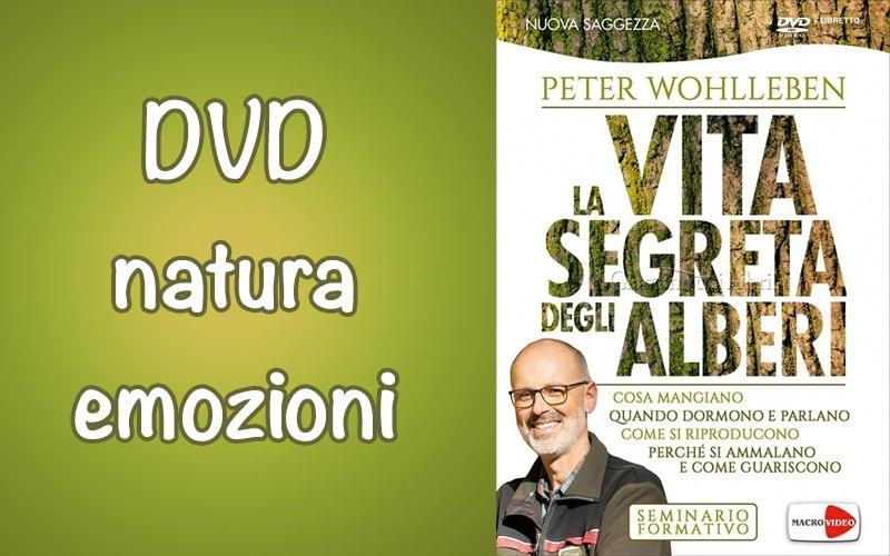 La Vita Segreta degli Alberi – Seminario Formativo in DVD