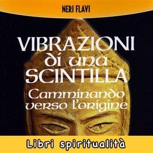 Vibrazioni di una Scintilla libro Neri Flavi