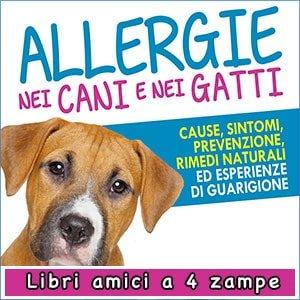 Allergie nei Cani e nei Gatti libro di Maria Cuteri in offerta