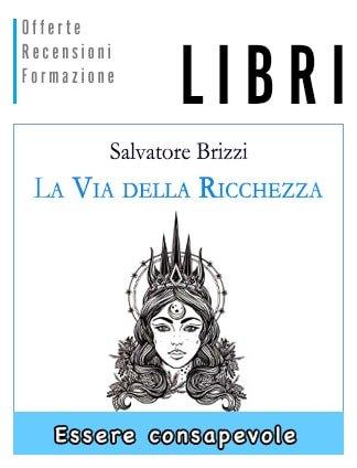 La Via della Ricchezza libro di Salvatore Brizzi
